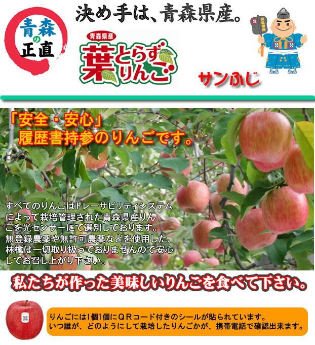 青森県産葉とらずりんご 黄葉ふじ生産者