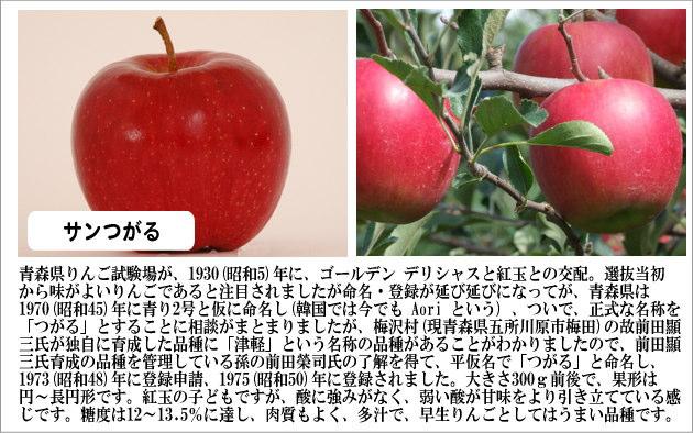 青森りんご【サンつがる】