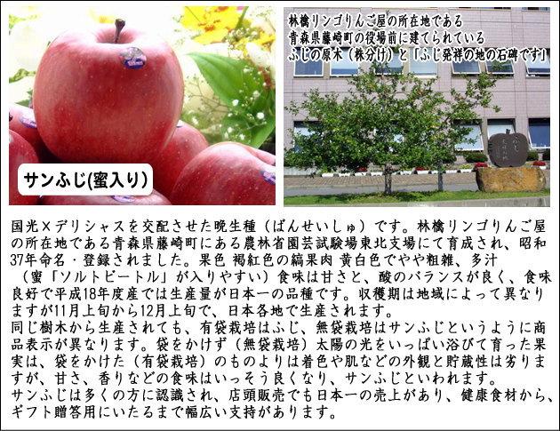 サンふじ蜜入りりんご