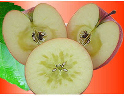 蜜入りりんご