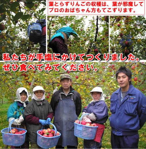 契約生産農家