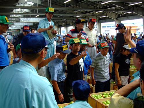 2007年度産りんごの初競り